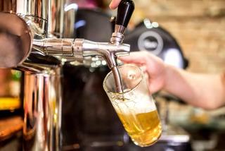 Proyecto + Curso De Cerveza Artesanal Maestro De La Cerveza
