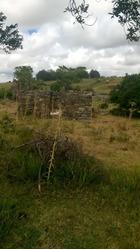 Campo Prox. Ruta 60