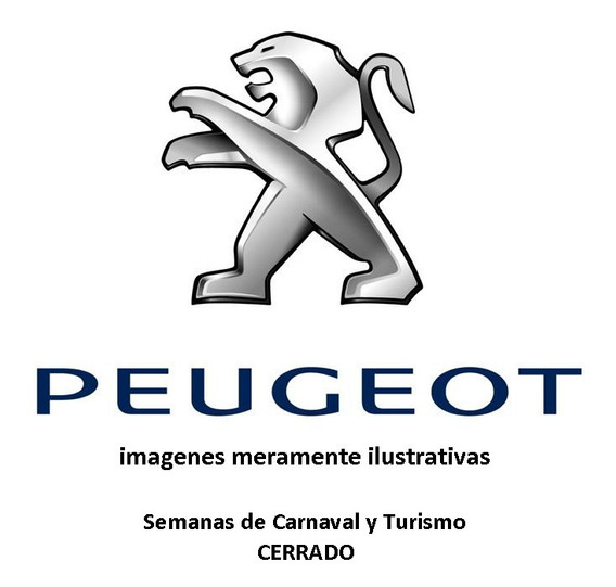 Kit Ruleman De Rueda Trasero Peugeot 301