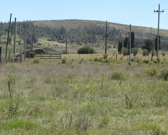 Chacra , Cabellerizas, Cerca De San Carlos Y Solanas