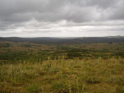 Campo 535 Hectáreas. Sierras De Rocha