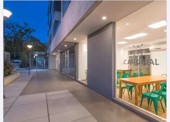 Alquiler Apartamento Maldonado