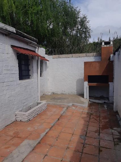 Varias Casas A Estrenar Escuchas/lacoste Desde $10-$11-$12-