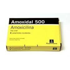 Amoxidal 500 Mg X 8 Comprimidos