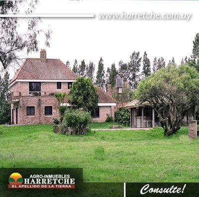 Campo Gran Casa 36 Has Pagos Anuales Inmobiliaria Harretche