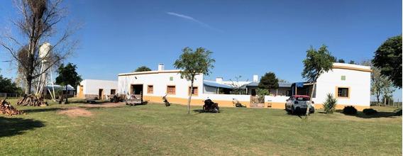 Establecimiento Rural Completo En Lavalleja