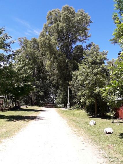 Casa En Balneario El Ensueño