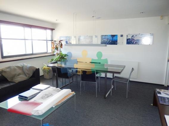 Exclusiva Oficina En La Peninsula-ref:817