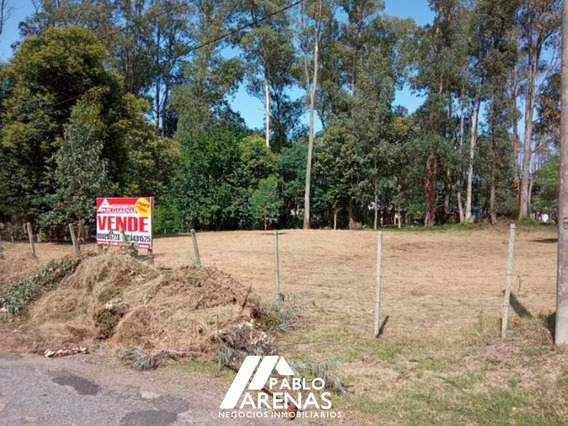 Terreno En Venta - 1200 M2 - Playa Blancarena - Colonia #312