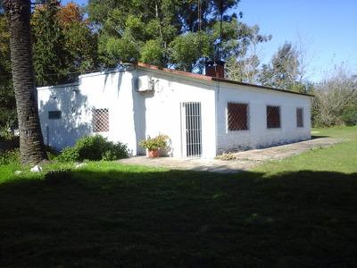 Chacra En Paysandu - Ruta 3 Y Estación De Servicio Ancap