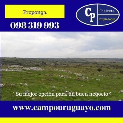 102 Hectáreas Con Aguada Permanente, Construcción, Oferte