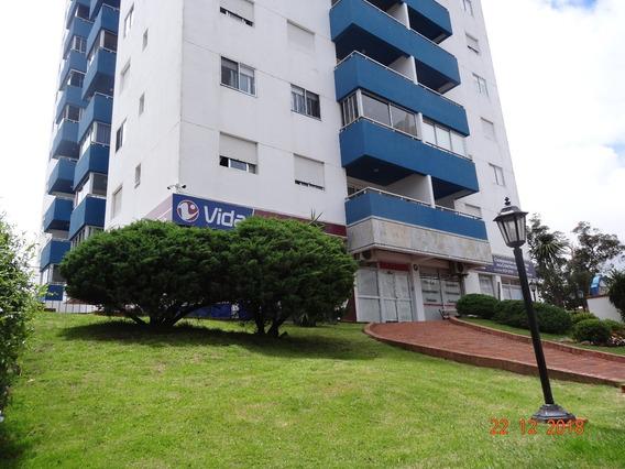 Alquileres Apartamentos Punta Del Este