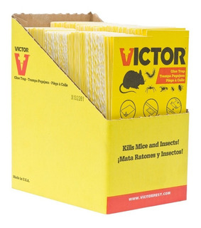 Trampa Para Ratones E Insectos Adhesiva Sin Veneno