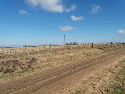 Terreno Campo 3,5 Hectáreas A 3km De Cerrillos, Ruta 36