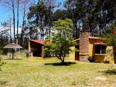 Casa 2 Dormitorios, Barbacoa Y Mucho Terreno. Mínimo Una Sem