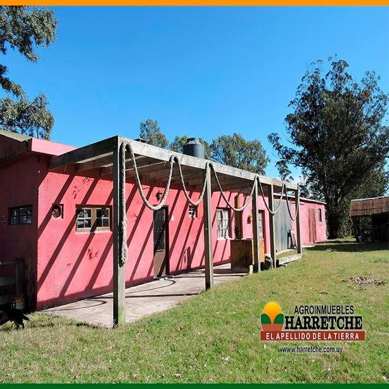 Vendo Chacra De 14 Has 2 Casas Bbcoa Potreros Financiación