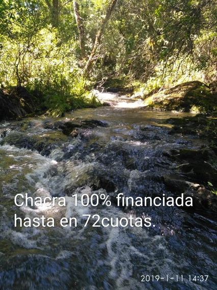 Chacra 5 Has.