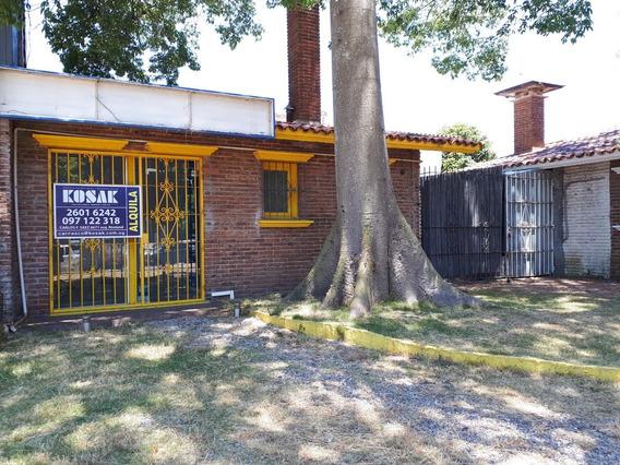 Alquiler Local Comercial Carrasco Centro