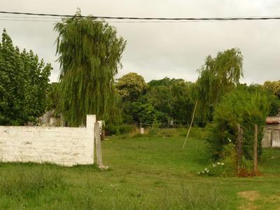 Terreno En Venta En Jardines Hipódromo , Lutecia 3826