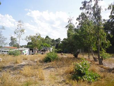 0e0te001pp Parque Del Plata