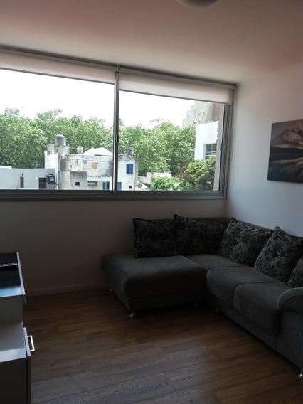 Dueño Alquila Amueblado Luminoso Apartamento 1 Dormitorio