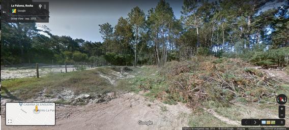 Terreno En La Paloma, Rocha, Uruguay