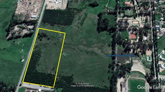 Campo De 7hás, En Inmejorable Zona De Trinidad