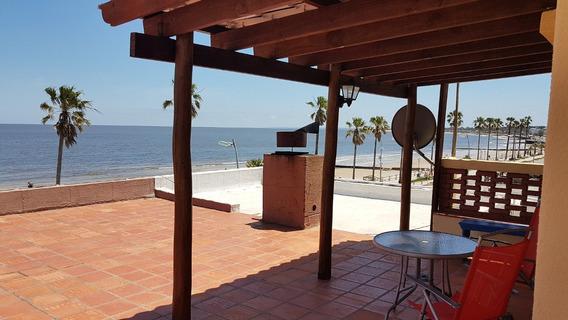 Alqui.frente A La Playa Pleno Centro 40 Dol.gastos Incluido