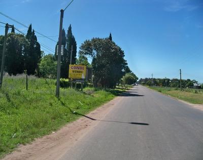 Terreno 11.780 M2 En Carmelo Ideal Desarrollo Inmobiliario