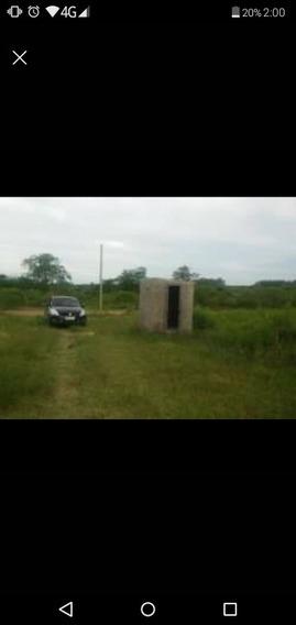 Chacra En Zona Sur De Salto.
