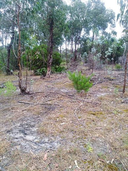 Lindo Terreno De 432 M2 En Una Zona Muy Tranquila.