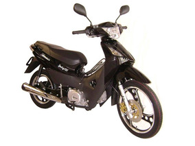 Vince Spring 125 Cc