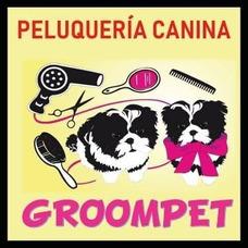 Peluquería Canina En Ciudad De La Costa Y Montevideo