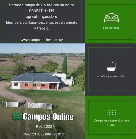 Hermoso Campo De 116 Agrícola-ganadero. Depto. Colonia