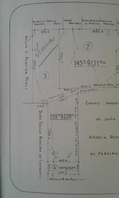 Campo 174 Ha Ganadero Proximo A Ruta 7 Km 175