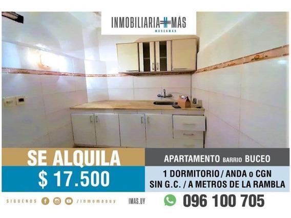 Alquiler Casa Buceo Montevideo Imas.uy V