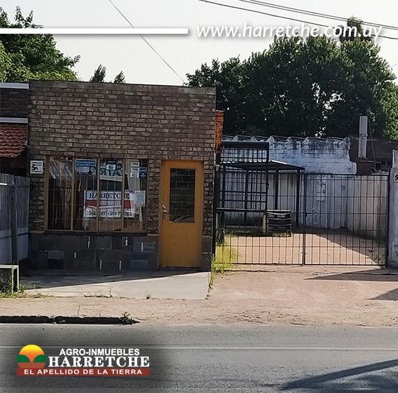 Alquilo Local Comercial Excelente Ubicación Progreso