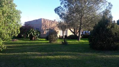 Casa Melilla, 2 Galpones, Barbacoa C/ 2 Casas En Alquiler