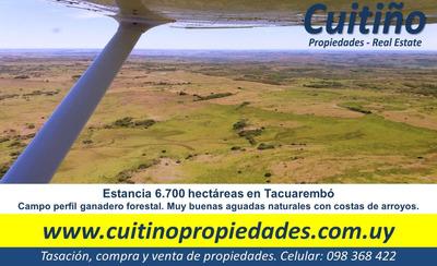 Estancia 6.700 Has. Campo Ganadero Forestal