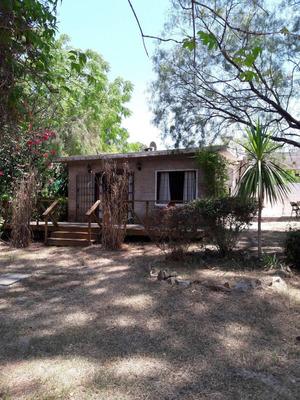 Alquilo Casa Cuchilla Alta (ocupada Desde 28/12 Al 3/1 Y Desde 11/1 Al 5/2)
