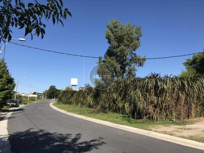 Venta Del 97,5 % De 2 Terrenos En Barra De Carrasco