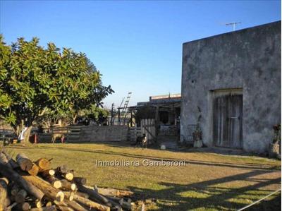 Chacra De 6 Hts. Sobre Camino Uruguay Con Cw35480