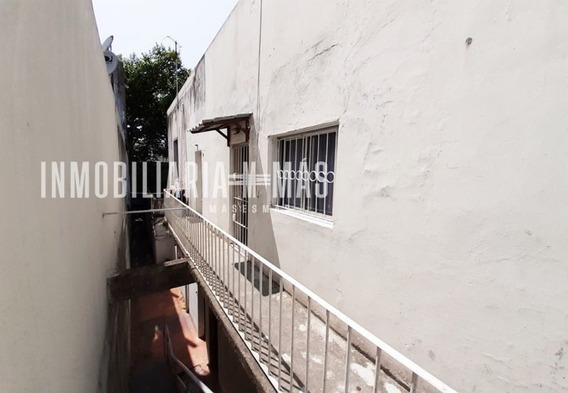 Apartamento Alquiler Barrio Sur Montevideo Imas.uy R *