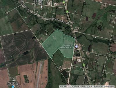 Estancia Sobre Ruta 3 Y Arroyo Sacra Paysandú Campo