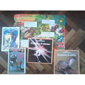 Lote De 5 Libros Intantiles