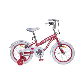 Bicicleta Ondina 16