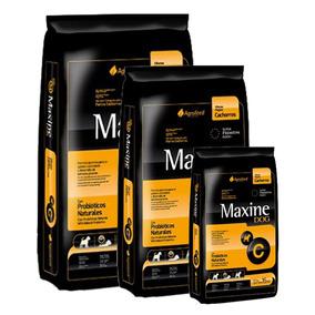 Comida Perro Maxine Cachorro 21kg + 3kg Obsequio + Envío