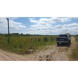 Campo De 10 Hectareas A 300 Mtr De La Ruta 36 .