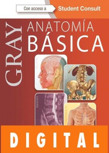 Gray. Anatomía Básica - Richard Drake, A. Wayne Vogl, Adam - $ 397 ...