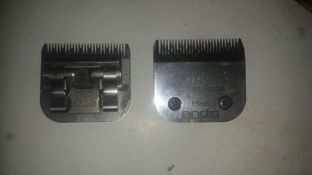 afilado de cuchillas de peluqueria canina. Cargando zoom. 476c61c35e25